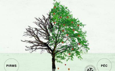 Augļu koku apkope